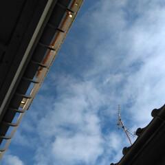 風景/空 見上げた空 am9︰25 寒いけど良いお…