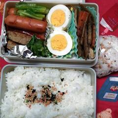 夫弁当/お弁当記録/フード/わたしの手作り おっさんず弁当。 食費はおさえる家。 フ…