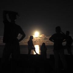 友人/徳之島/夏休み/月の道/夏/離島/... 徳之島にて、月の道を背景に各自思い思いの…
