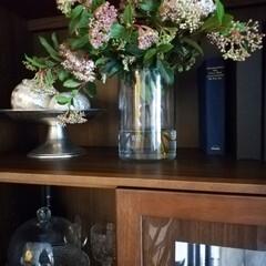 ガラスドーム/ニトリ/ガラスベース/インテリア/花のある暮らし/雑貨/... ダイニングテーブル用の花を購入したのです…