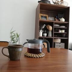 おうちカフェ/コーヒー/オリーブ/観葉植物/暮らし/子供と暮らす/... こんばんは🌛  今日のコーヒーはアメリカ…