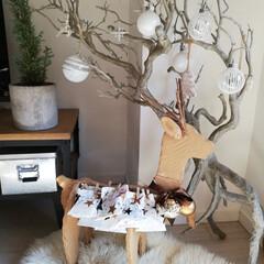 枝ツリー/アドベントカレンダー/ムートン/クリスマス2019/リミアの冬暮らし/セリア/... 遅くなりましたが、アドベントカレンダー作…
