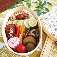 薩摩芋/チキンカツ/小松菜煮浸し/梅干し/わっぱ弁当/お弁当/... 自分用にもお弁当詰めました✨家にいますが…