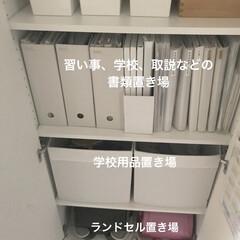 コクヨ ファイルボックスS A4 収容幅94ミリ グレー フ-E450M   コクヨ(マガジンラック)を使ったクチコミ「久しぶりの投稿になってしまいました。 新…」(2枚目)