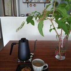 電気ケトル/コーヒー/枝もの/至福のひととき/おやつタイム/LIMIAインテリア部/... こんばんは🌛 お久しぶりです。 今週末で…