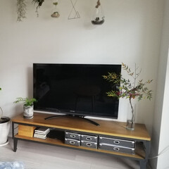 収納/テレビボード/観葉植物/枝もの/書類収納/書類整理/... ずーっと気になっていたテレビ周り、模様替…