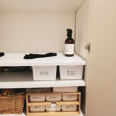 書類整理/靴下/ダイソー/セリア/100均/住まい/... 洗濯を畳んでいると穴のあいた靴下を発見し…