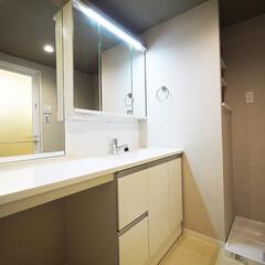 洗面/ドレッシングルーム 3面鏡+大きな1面鏡の洗面室