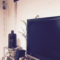 onlili/加湿器/インテリア加湿器/デザイン家電/ヴィンテージ/陶器 【ベストバイ】買ってよかったOnlili…(1枚目)