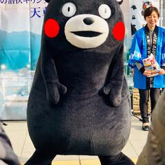 熊本/ご当地キャラクター/くまモン くまモンが熊本から遊びに来てくれていまし…(7枚目)