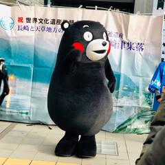 熊本/ご当地キャラクター/くまモン くまモンが熊本から遊びに来てくれていまし…(4枚目)