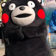 熊本/ご当地キャラクター/くまモン くまモンが熊本から遊びに来てくれていまし…(2枚目)