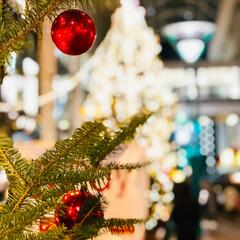 博多/2018/クリスマス/クリスマスツリー/おでかけ 福岡県 天神 クリスマスツリー🎄✨ ウッ…
