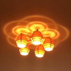 我が家の照明 天井に映る影が素敵で、とても気に入ってい…