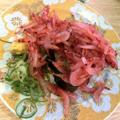 あと何貫チョナンカン/幸せ/サリーちゃんは今日も飲む/食いしん坊/桜えび/キラキラお寿司/... キラキラお寿司✨🍣その2  これ、お寿司…
