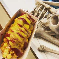 ハロウィン/食欲の秋/ハニーマスタード/ケチャップ/チーズドック 大ハマり中のチーズドック💛 店内がハロウ…