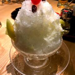 冬/雪/免許更新/サリーちゃんは今日も飲む/しろくま/かき氷/... 極寒だというのにしろくまかき氷を食べまし…