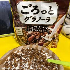日清シスコ ごろっとグラノーラ チョコナッツ 500g 1袋(シリアル)を使ったクチコミ「今朝のあさごはん🥣  今日は奇跡的に早起…」