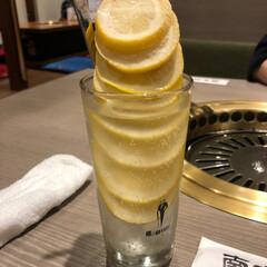 やっぱりビールが好き/お酒のある生活/お酒が好き/お酒が飲みたい/酎ハイ/レモンサワー/... これ、とっても映えなレモンサワーなんです…