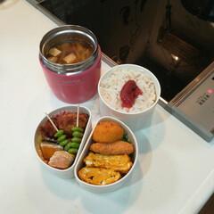 お弁当/パパ弁当/フォローお気軽に/キッチン/キッチン雑貨/ごはん おはようございます♬  インフルエンザ警…(2枚目)
