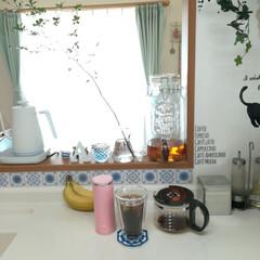 コーヒーを愉しむ/アイスコーヒー/令和元年フォト投稿キャンペーン/ドウダンツツジ/植物のある暮し おはこんにちは。  こちらは雨の予報です…