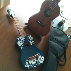 音楽を楽しむ♬/音楽のある暮らし/家族でウクレレ♬/子供のいる暮らし/ウクレレ/雑貨 お久しぶりの投稿です(;´∀`)💦  私…