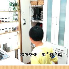 「今日はおやつに薩摩銘菓のかるかんを頂きま…」(2枚目)