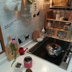 自家製冷凍食品/パパ弁当/らくらくお弁当作り♬/キッチン おはようございます(●´ω`●)❤ LI…