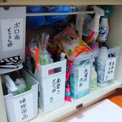 ストック/ファイルケース/つっぱり棒/洗面所収納/キャンドゥ/ダイソー/... 洗剤などを詰め替える度にストック探すのイ…(4枚目)