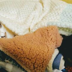 ペット/猫/犬/ファッション/インテリア/雑貨/... ダイソーのボアはぎれ(1枚108円)を2…(7枚目)