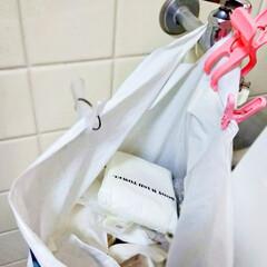 ストック/ファイルケース/つっぱり棒/洗面所収納/キャンドゥ/ダイソー/... 洗剤などを詰め替える度にストック探すのイ…(5枚目)