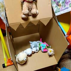遊び/子ども/お店屋さんごっこ/単語帳/段ボール/リメイク/... 姪っ子用にダンボール箱でお店やさんハウス…