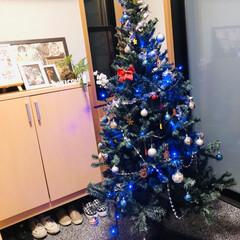 イルミネーション/ツリー/クリスマス/クリスマスツリー 玄関にツリー🎄も出しました♪ 夜はイルミ…(2枚目)