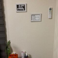 写真立て/壁面ディスプレイ/お気に入り/100均/セリア 寂しかった壁面が、、、😍