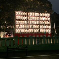 東京大神宮/神社/2018/クリスマス/風景 大好きな東京大神宮😍 皆様も良いクリスマ…