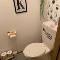 サンゲツ/サンゲツの壁紙/トイレットペーパー/突っ張り棒/トイレ/雑貨/... トイレを🚽気分転換にまたまた変えてみまし…
