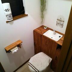 調湿効果 塗り壁/消臭効果/スアブウォール ネオ 塗り壁/タンクレストイレ/DIY/100均/... タンクレス風トイレにしてみました。 収納…
