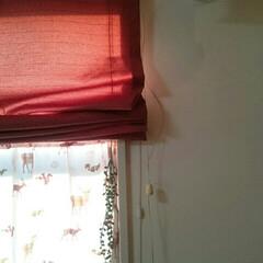 赤がテーマ/娘の部屋 こんばんは☺   娘の部屋✨   今のと…