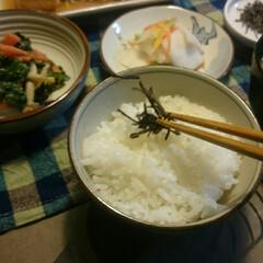 まめちゃん/和食/小松こんぶ/さばの味噌煮/夕ごはん/赤いキッチン こんばんは☺  赤いキッチンより🌼  今…(2枚目)
