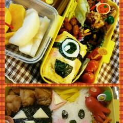お弁当/秋/遠足 秋は遠足や社会見学があり、お弁当を作る機…(1枚目)