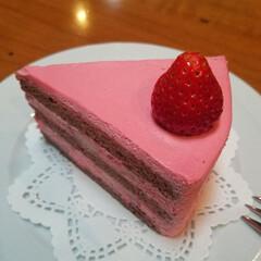 スイーツ/ケーキ/いちご/春のフォト投稿キャンペーン/ありがとう平成/令和カウントダウン/... 可愛すぎる、しかも美味しすぎる苺のショー…