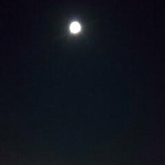 満月の夜 私のカメラは!!これが精一杯〜 綺麗な🌕…
