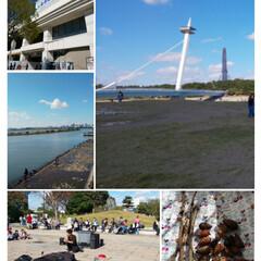 松ぼっくり/大道芸人/お散歩/葛西臨海公園 昨日は2人で地元の葛西臨海公園まで散歩👣…