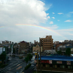 いいことありそうな予感/久々の虹 降ったりやんだり…… もしや🌈 💕🎶見れ…