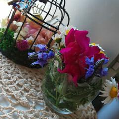 花のある生活/ドラゴン/天使/アイアンカゴ/ガーデニング大好き/暮らし ベランダの花達を刈り取りしました!!キン…