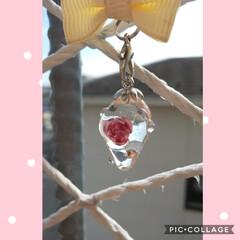 透明/レジンキーホルダー/ハンドメイド 透明な🍓の中に薔薇を封入りしてみました🤔…