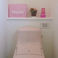トイレ 好きなブランドのショッパーをトイレ用品入…