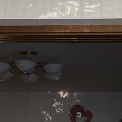 「暑ぢ〜い😂 壁紙に光の模様が こんなの大…」(2枚目)