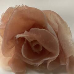 暮らし コロナにより引篭 生ハムで薔薇🌹を作って…