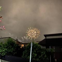 癒し/雨空/エール花火 食事して居ると近くで爆発音 なにが起きた…(1枚目)